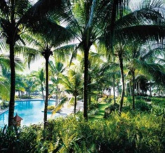(N)24C038H - Swimming Pool