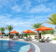 Its_Always_A_Good_Idea_To_Spend_The_Day_By_The_Pool_Mini