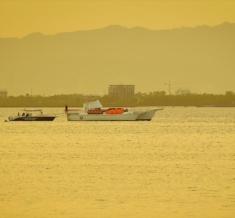 Cruising_53